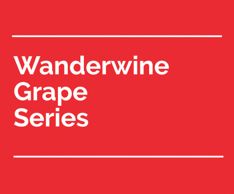 wanderwine grape series